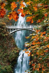 Autumn Frame at Multnomah Falls, Columbia River Gorge, Oregon by Vincent James