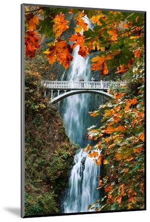 Autumn Frame at Multnomah Falls, Columbia River Gorge, Oregon by Vincent James