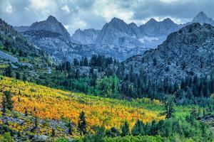 Autumn Near Aspendell, Eastern Sierras, California by Vincent James