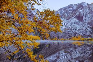 Autumn Reflections Lakeside, Convict Lake Mammoth California by Vincent James