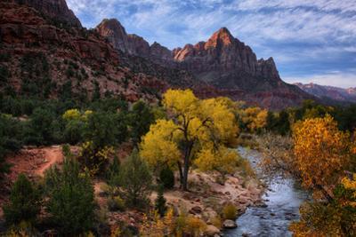 Autumn Southwest Zion National Park, Utah by Vincent James