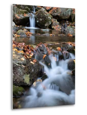 Autumn Stream in the White Mountains, New Hampshire by Vincent James