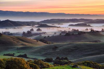 Beautiful Morning Hills and Fog Petaluma Sonoma California by Vincent James