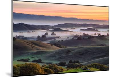 Beautiful Morning Hills and Fog Petaluma Sonoma California by Vincent James