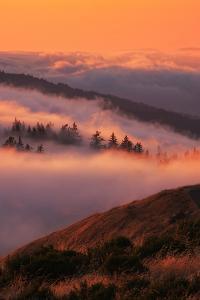 Beautiful Sunset Fog Flow Russian Ridge Sanat Cruz Mountains La Honda Redwood City by Vincent James