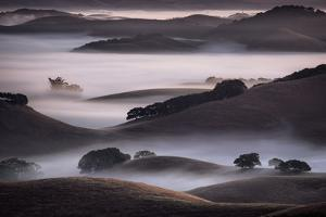 Blend of Hills and Fog, Magic Morning in Sonoma, Petaluma California by Vincent James