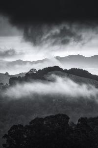 Blustery Fog at Oakland Hills, California by Vincent James