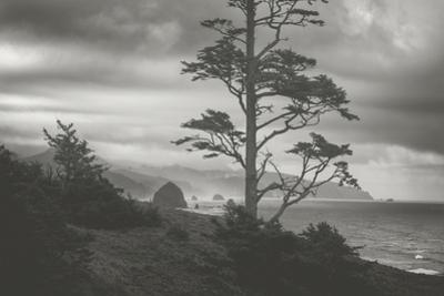 Blustery Morning View From Ecola Point, Oregon Coast by Vincent James