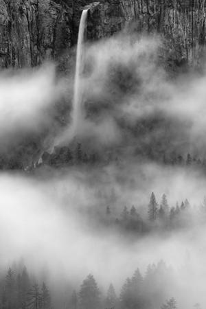 Bridalveil Fall Dreams Within Fog Yosemite Valley Black White by Vincent James
