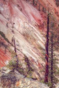 Canyon Detail, Yellowstone by Vincent James