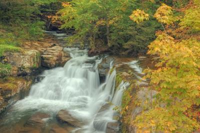 Catskill Roadside Waterfall by Vincent James