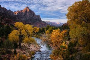 Classic Autumn View Zion National Park, Utah by Vincent James