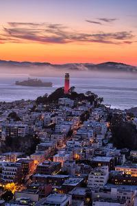Classic Coit Tower After Sunset, San Francisco, Cityscape, Urban View by Vincent James