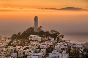 Coit Tower and Golden Fog Flow, San Francisco, Cityscape, Urban View by Vincent James