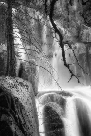 Deep In the Cascades, Yosemite by Vincent James