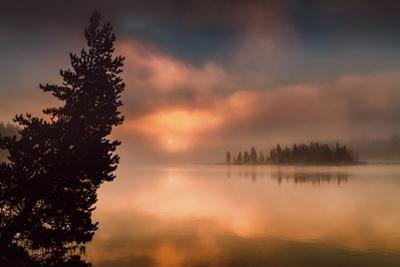 Destination Go Somewhere Sunrise Fog at Yellowstone Fishing Bridge by Vincent James