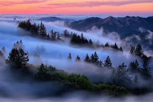Dream Fog at Sunset, Mount Tamalpais, Marin, Bay Area San Francisco by Vincent James