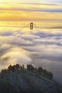 Dream Gate Golden Morning, San Francisco, California by Vincent James