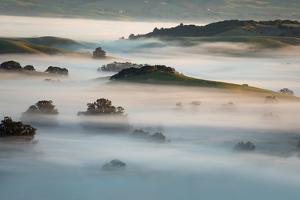 Dreamland Morning Fog Petaluma Hills Northern California by Vincent James