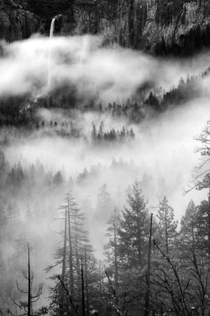 Dreamy Fog & Bridalveil Falls Yosemite Valley Black White by Vincent James