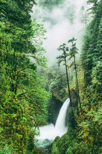 Dreamy Metlako and Fog in Spring, Waterfall Columbia River Gorge, Oregon by Vincent James