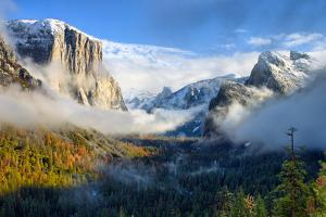 Dreamy Valley, Fog and Mist Yosemite National Park by Vincent James