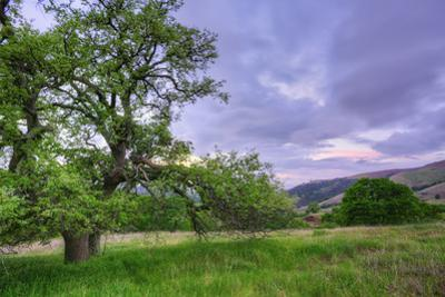 Easter Sunset from Mount Diablo by Vincent James