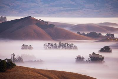 Ethereal Mist and Country Hills of Petaluma, Sonoma County, Bay Area Fog by Vincent James