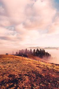 Ethereal Morning Walk, Hayden Valley Wyoming, Yellowstone National Park by Vincent James
