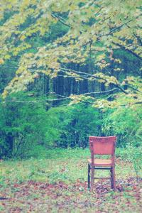 Fall Seat, Catskill Mountains, New York by Vincent James