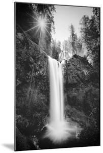 Falls Creek Falls in Black and White, Washington, Columbia River Gorge by Vincent James