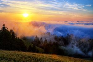 Fog and Light Mix Hills of Mount Tam California by Vincent James