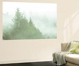 Fog Art Impressions Nature Detail by Vincent James