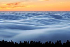Fog Stream at Sunset, Mount Tam, Pacific Ocaen, San Francisco by Vincent James