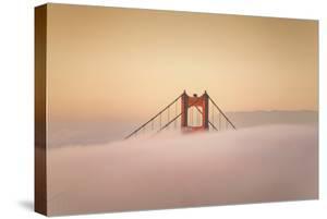 Golden Tower Peek & Morning Light, Golden Gate Bridge Fog San Francisco Bay by Vincent James