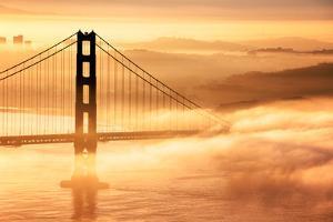 Goldie Dream, Fog and Light, Golden Gate Bridge, San Francisco Cityscape by Vincent James
