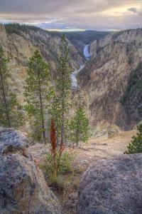 Grand Canyon of the Yellowstone Sunset, Wyoming by Vincent James