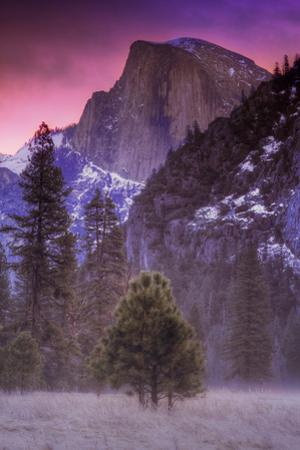 Half Dome Trees and Light Mist Sunrise Yosemite Valley by Vincent James