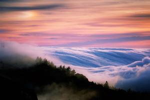 Heavenly Fog & Sunset Light Alchemy at Mount Tam, Marin California by Vincent James