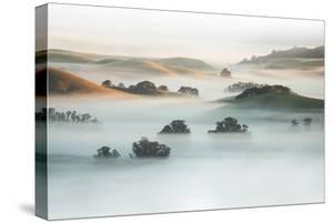 Heavenly Petaluma Countryside Fog Farm and Morning Light, California Sonoma by Vincent James