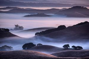 Hills and Fog of Northern California, Petaluma, Bay Area by Vincent James