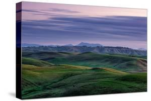 Hills Mist and Winter Green Northern California Hills Marin County Country by Vincent James