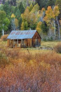 Hope Valley Cabin Scene by Vincent James