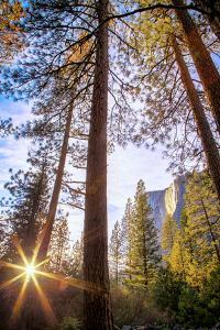 Horsetail Falls and Setting Sun From Within, Yosemite National Park by Vincent James