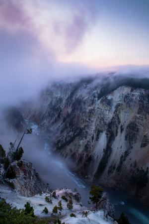 In the Canyon with Peaceful Fog at Sunrise Yellowstone River National Park Wyoming by Vincent James