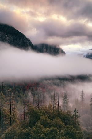 Incredible Blustery Fog Clouds Trees Yosemite Valley Tunnel View by Vincent James