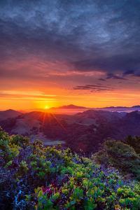 Late Spring Sunrise Magic, Mount Diablo, Lafayette, California, Oakland by Vincent James
