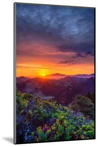 Late Spring Sunrise Magic, Mount Diablo, Lafayette, California, Oakland by Vincent James