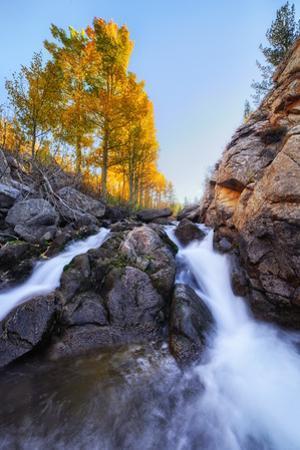 Life Flows Bishop Creek in Autumn California Eastern Sierras by Vincent James