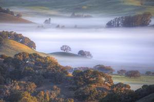 Light and Fog Moving Through Petaluma Hills, California by Vincent James